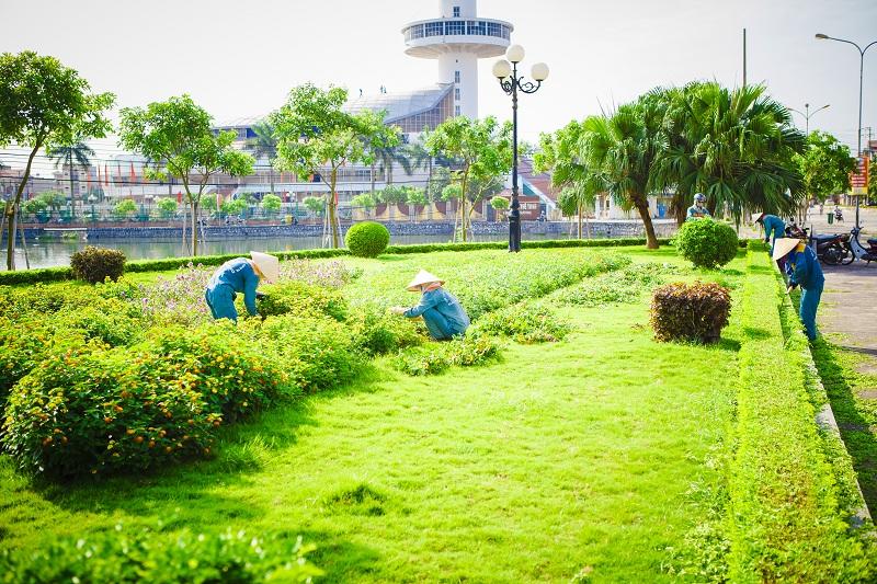 Trồng và chăm sóc cây cảnh xanh tại nhà TP Vinh Nghệ An