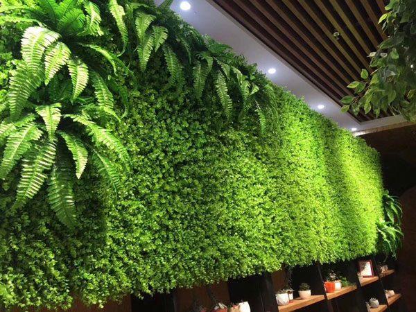 Thi công Tường cây giả, cỏ nhân tạo tại TP Vinh Nghệ An